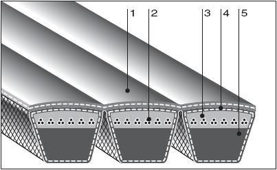 Конструкция многоручейных ремней